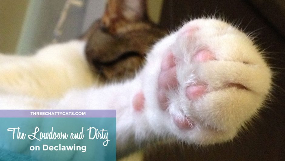 Declaw Awareness