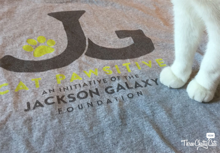 Dexter's toesies get comfy on the JGF shirt
