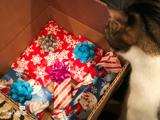 tabby cat with presents