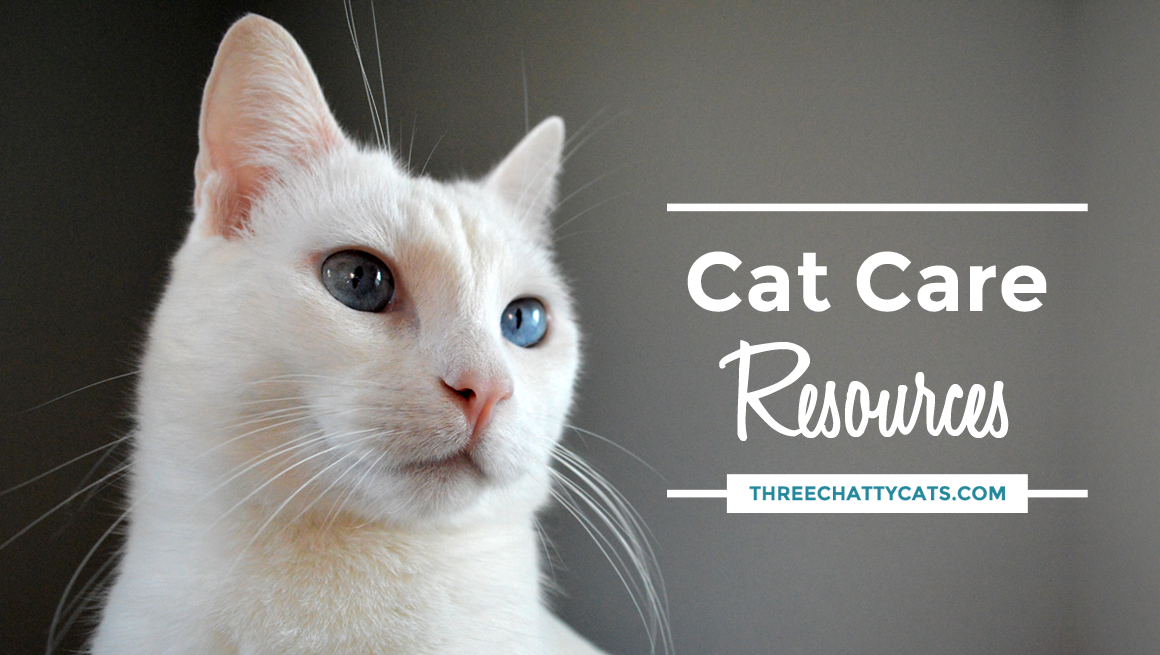 Cat Care Resources