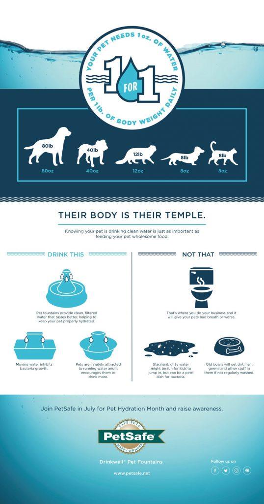 PetSafe Infographic