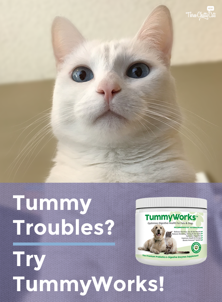 Tummy Troubles? Try TummyWorks!