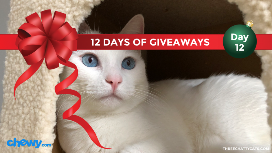 Chewy.com | 12 Days of Giveaways