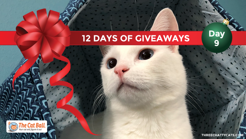The Cat Ball | 12 Days of Giveaways