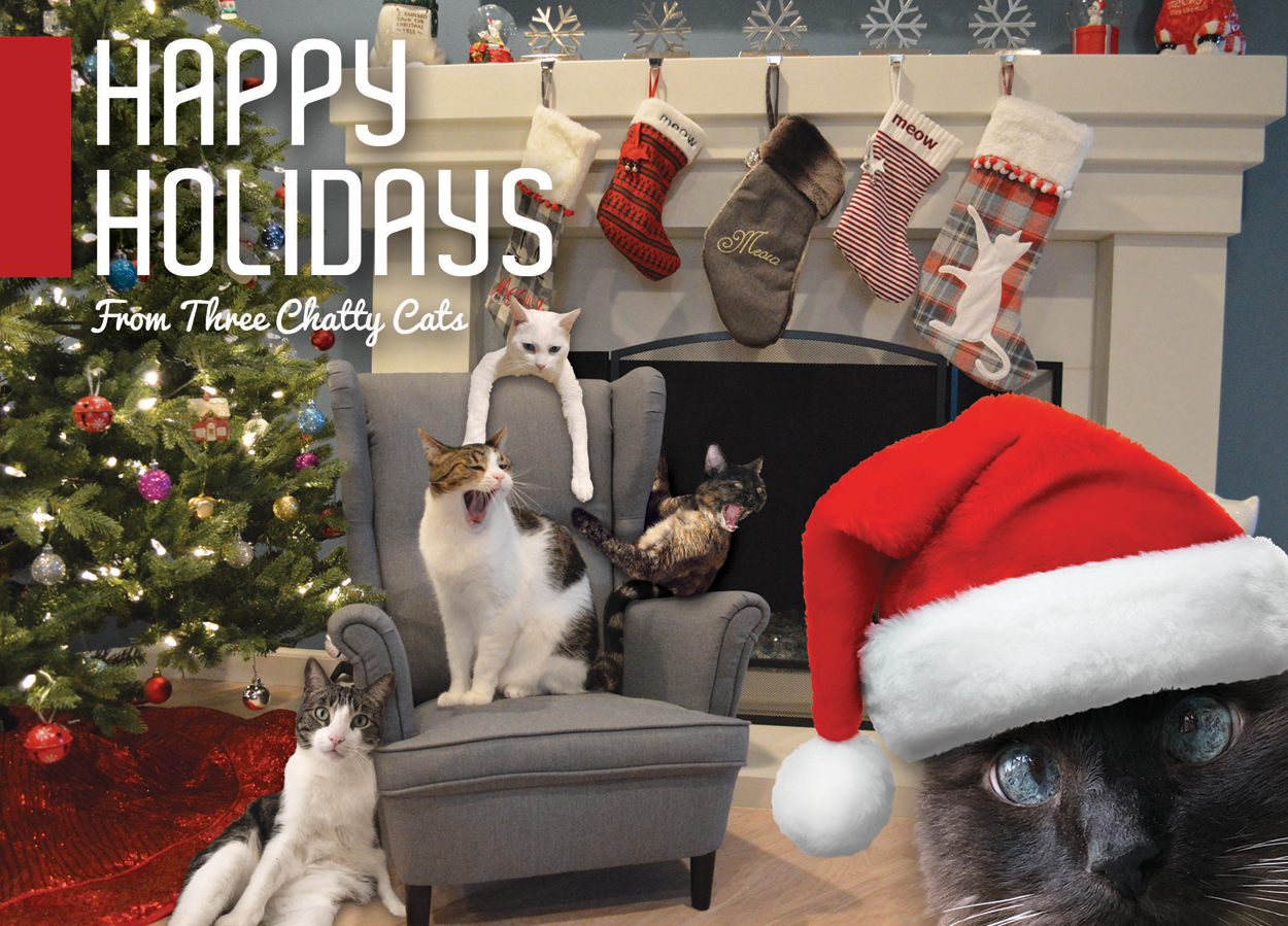 Happy Holidays from the Three Chatty Cats and the Jr. Associates