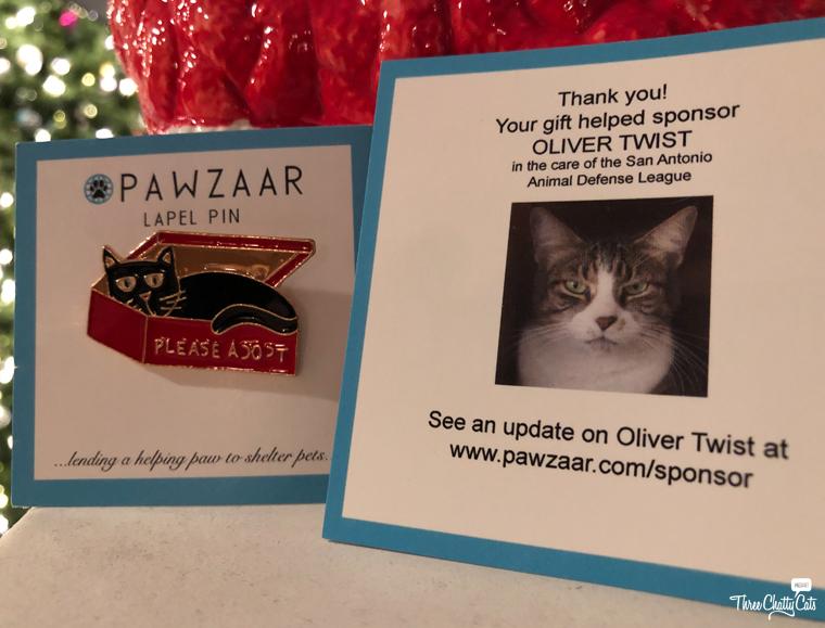 """please adopt"" cat pin"