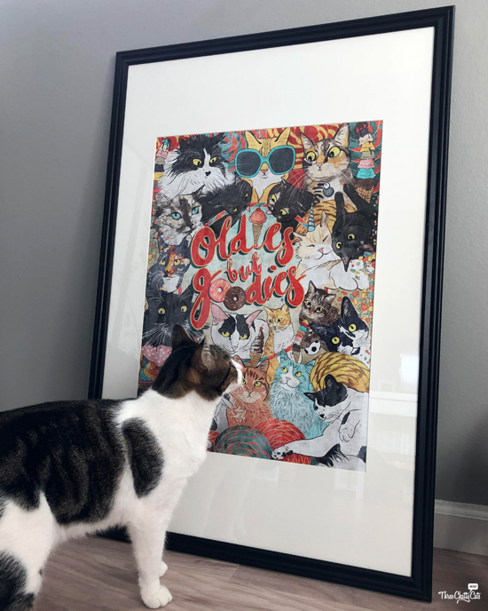 tabby cat checks out My Dirty Paws poster by Stacy Tang