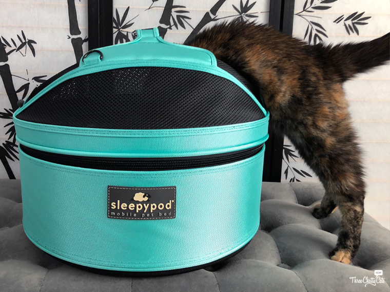 tortie cat investigates the Sleepypod Mobile Pet Bed