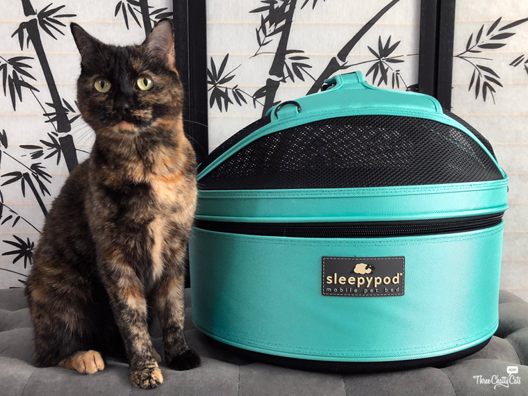 tortie cat shows off the Sleepypod Mobile Pet Bed