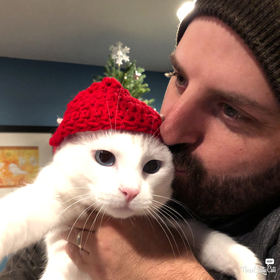 white cat in hat with cat dad