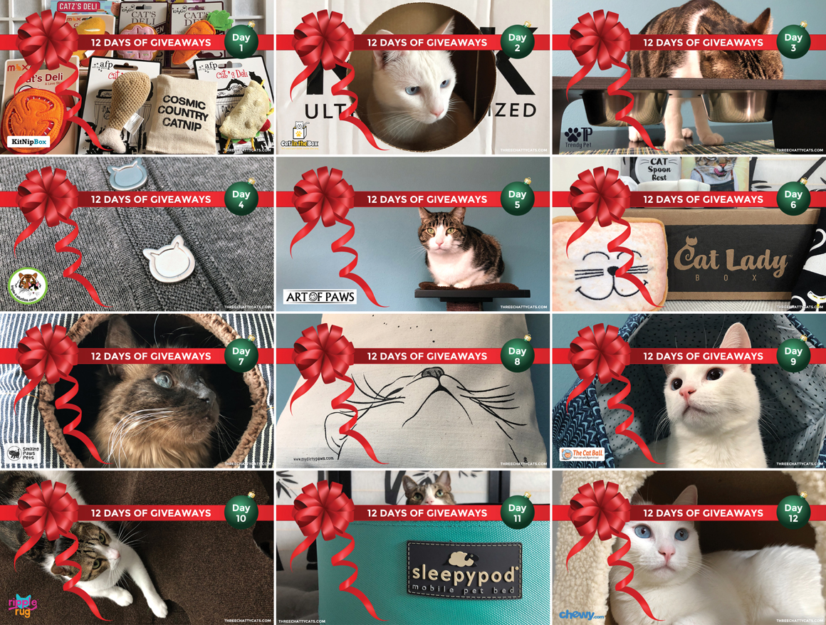12 Days of Giveaways | Three Chatty Cats
