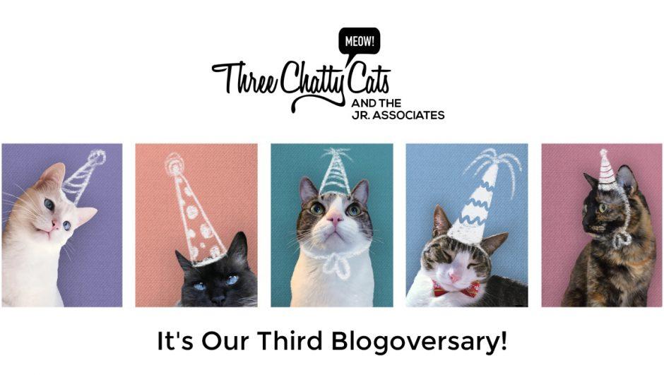 Three Chatty Cats Turns Three! #blogoversary