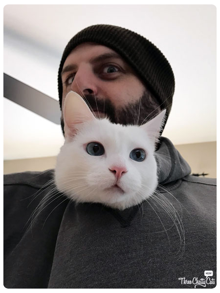 white cat and her cat dad
