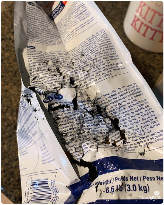 chewed food bag