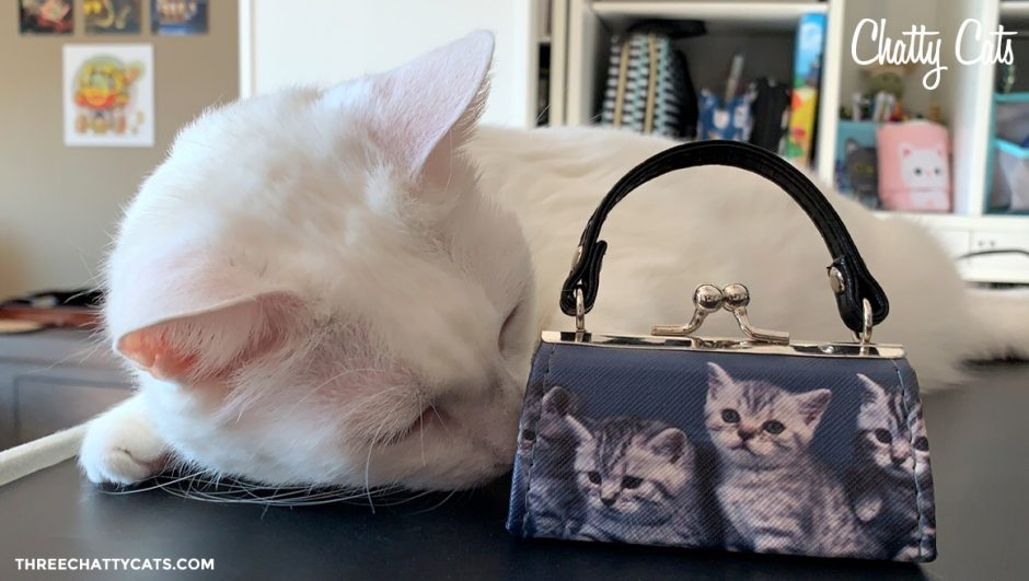 white cat investigating purse