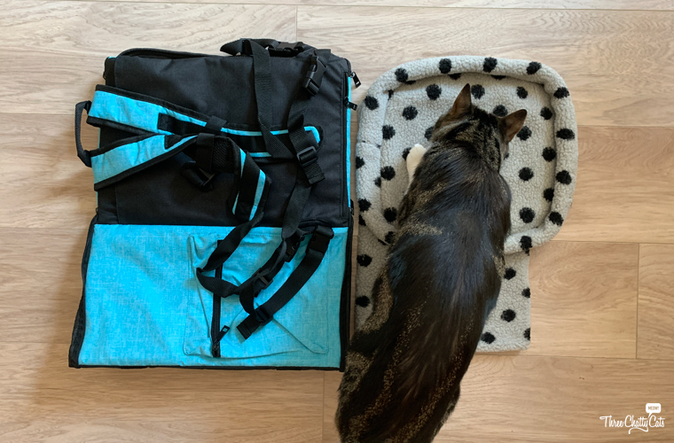 cat with Lil Paws 5-in-1 Premium Pet Car Carrier