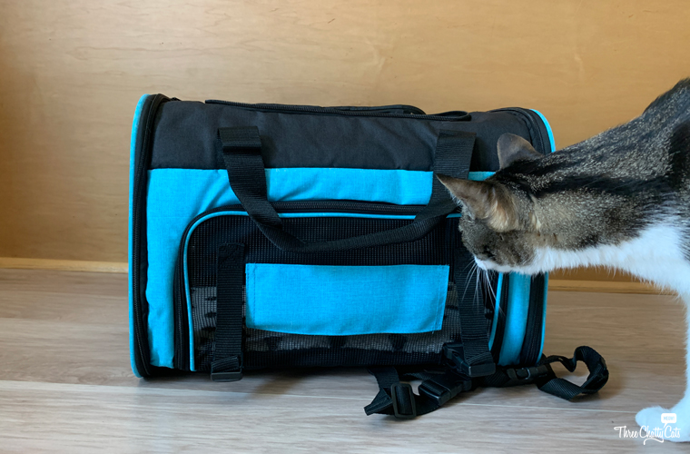 tabby cat with Lil Paws 5-in-1 Premium Pet Car Carrier