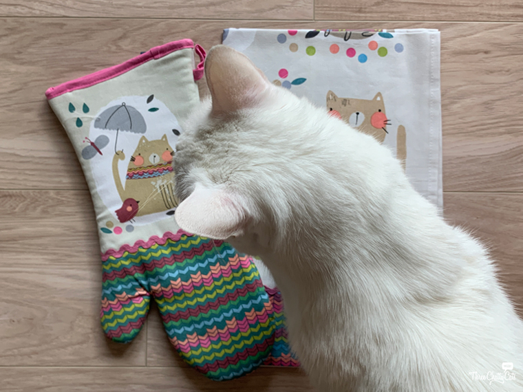 white cat with oven mitt and towel