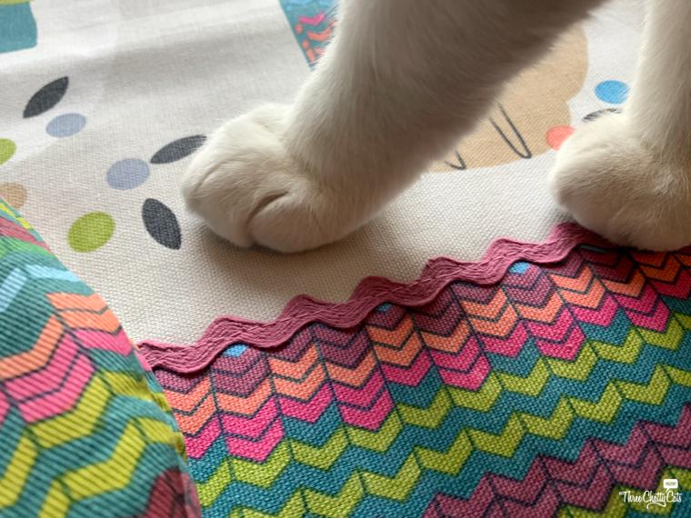 white paw on towel