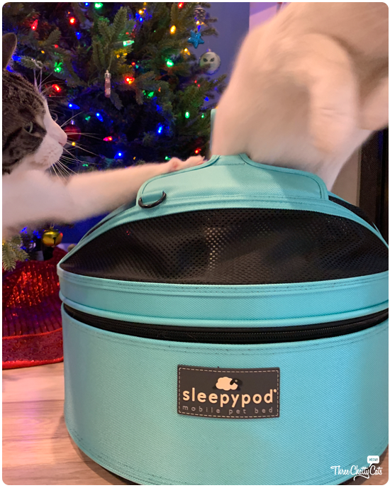 sleepypod blooper