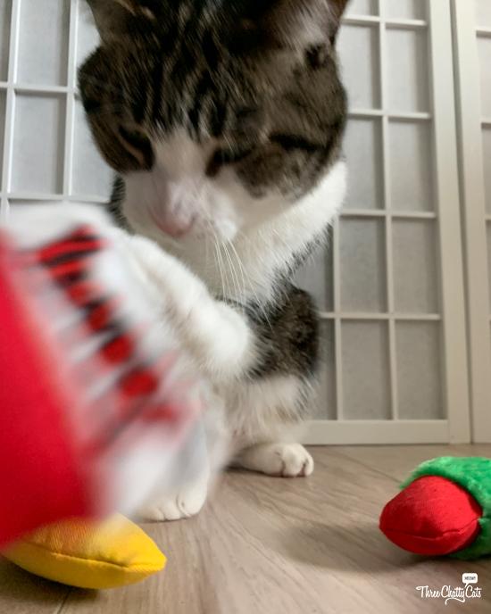 tabby cat with yeowww catnip toys