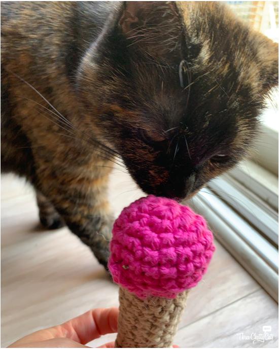 tortie cat sniffing catnip toy